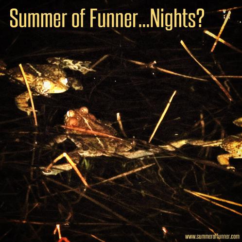 Summer of Funner ... Nights