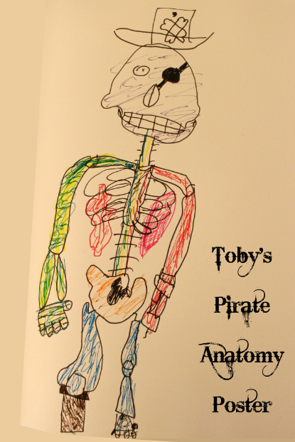 Toby's Pirate Anatomy Poster
