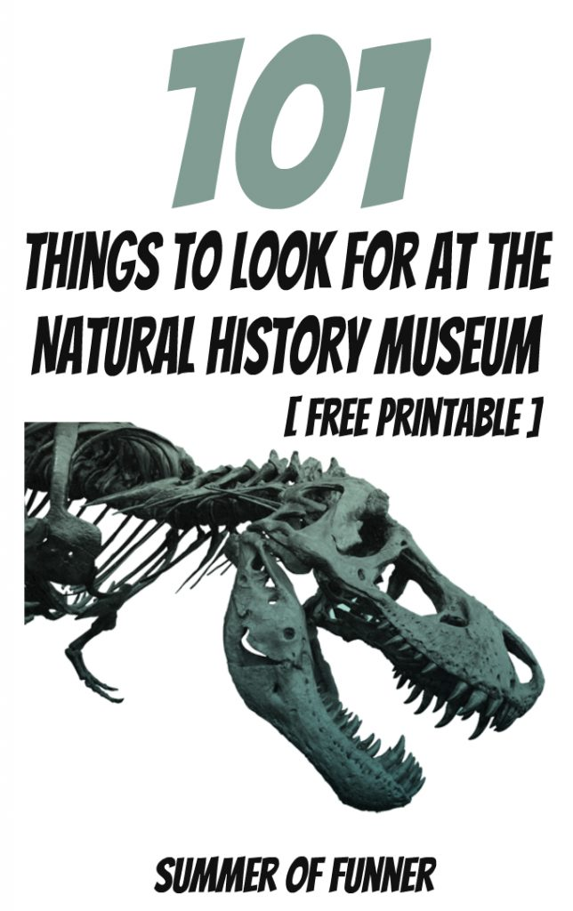 101 Things to Look for At the Natural History Museum Free Printable List from Summer of Funner Inside