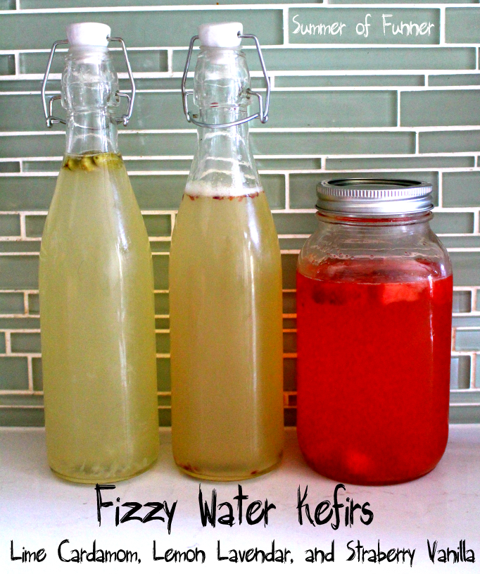 fizzy Water Kefirs Lime Cardamom Lemon Lavendar and Strawberry Vanilla